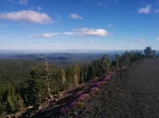 Atop the Newberry volcano