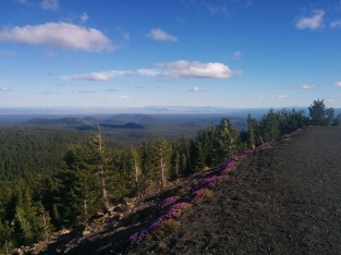 Atop the Newberry volcano