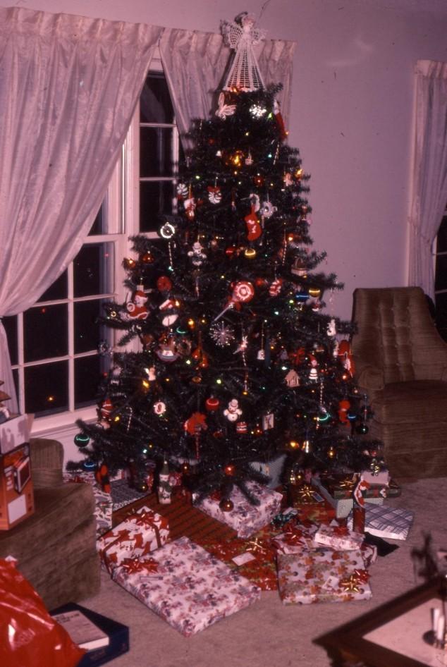 Christmas 2a 1984.JPG